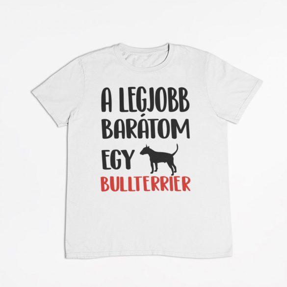 A legjobb barátom egy bullterrier férfi póló