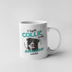 A legjobb collie gazdik (hónapban) születtek bögre