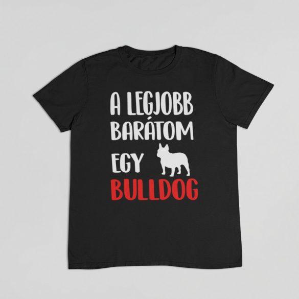 A legjobb barátom egy francia bulldog férfi póló